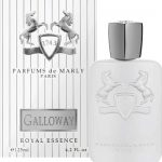 Marly Galloway - parfyumernaya-voda-edp-125-ml